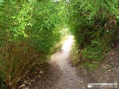 Cazorla - Río Borosa - Guadalquivir; viaje fin año valle del silencio viajes organizados
